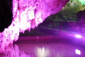 Grotte di Pertosa  (4)